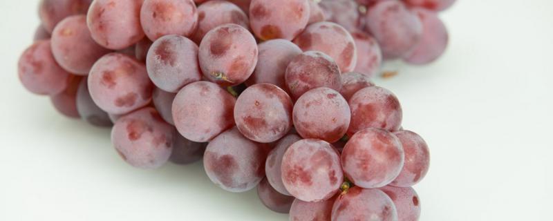 葡萄酒怎么样制作,自制葡萄酒的方法介绍